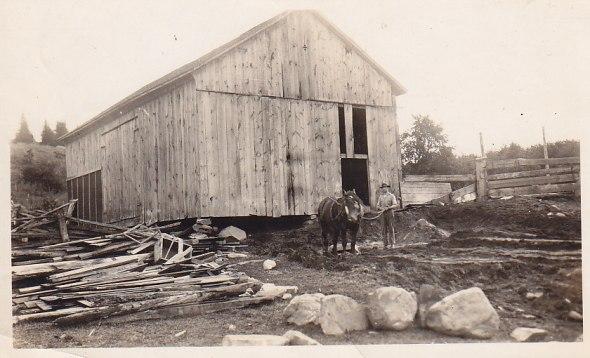 Bill Crewson preparing barn for basement 1921