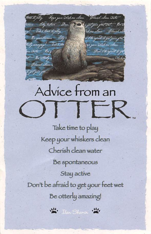 © 2009 YTN, Advice From An Otter, is a trademark of Your True Nature, Inc.  Reposted with permission.  http://www.YourTrueNature.com 1-800-992-4769