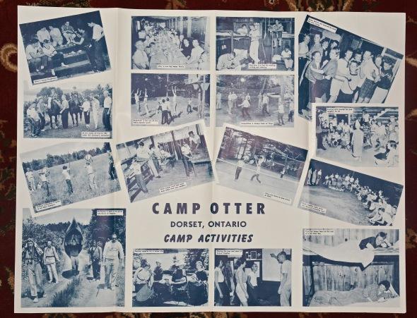C-Otter-60